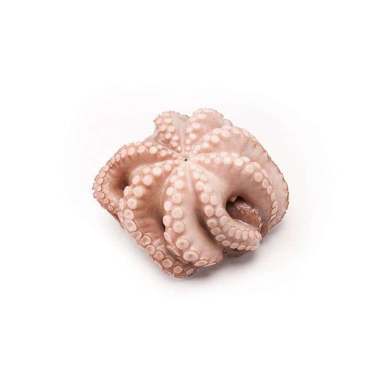 frozen octopus wholesale